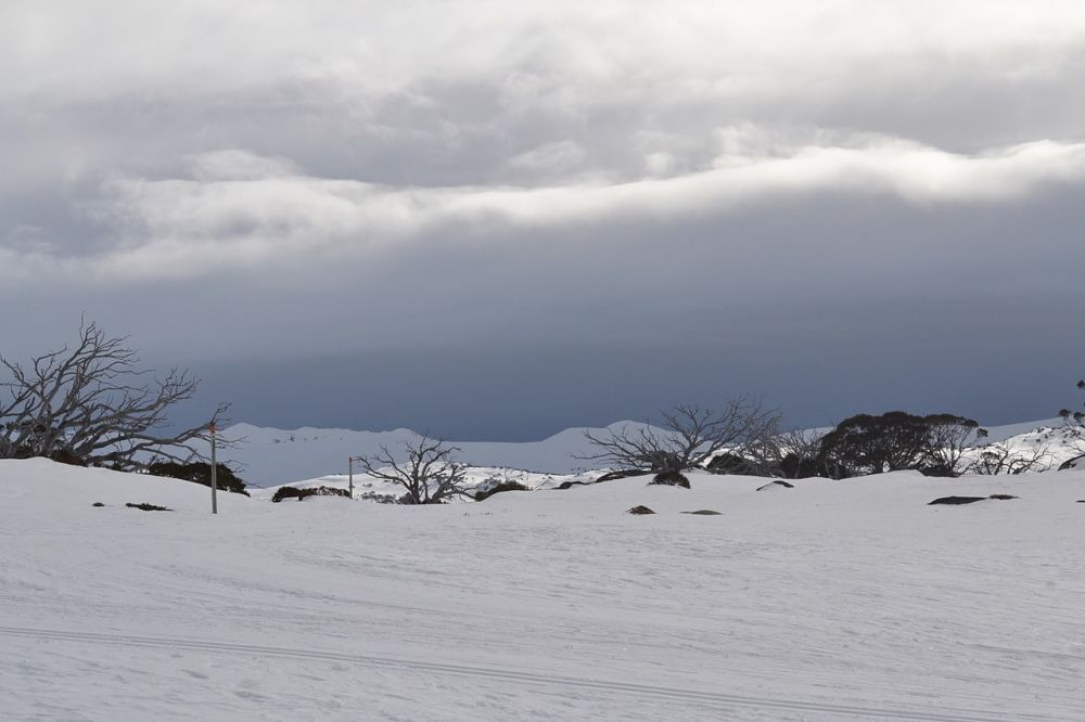Snow-pic_opt